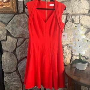 Calvin Klein Red Dress with Gold Zipper, Size 10
